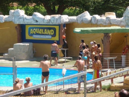 Aqualand Torremolinos: lachtaní show