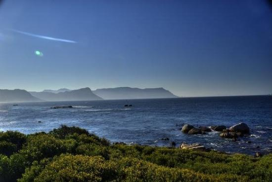 Pringle Bay Photo
