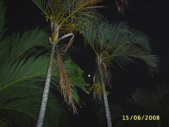 Pirate's Inn: a full moon from our balcony
