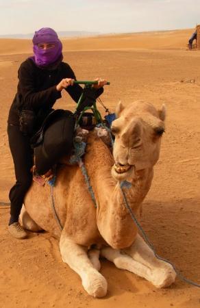 Moroccan Sahara: sahara