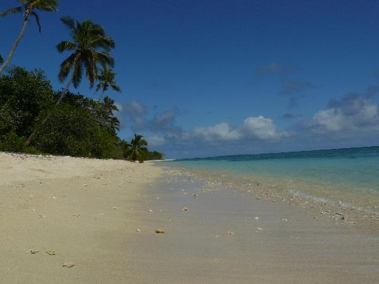 Serenity Beaches Resort: Beach in front of the fale