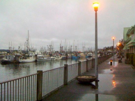 Campbell River Photo