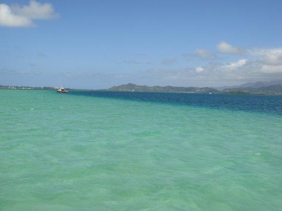 Kane'ohe Bay