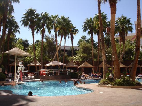 Ti Pool Picture Of Treasure Island Ti Hotel Casino Las Vegas Tripadvisor
