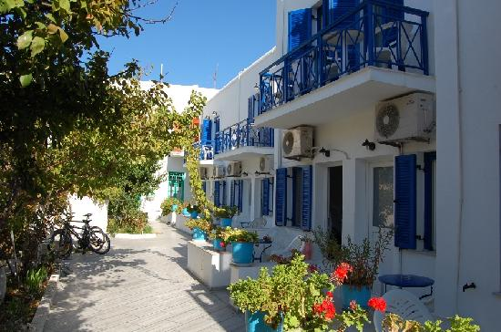 Captain Manolis Hotel : Garden