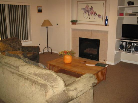 Swan Mountain Resort: Living Room - 1 Bedroom Unit