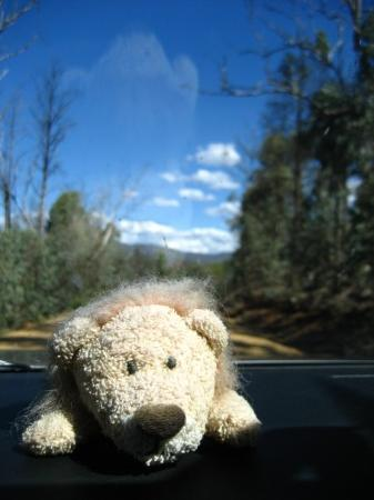Snowy River National Park: bumpy gravel road ahead