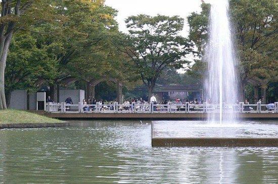 Parque Yayogi