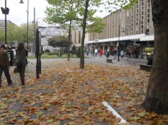 Bolton-billede