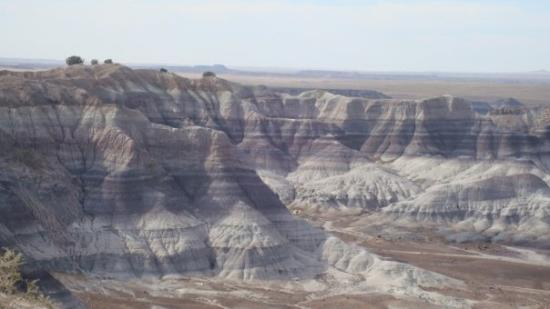 Painted Desert: Blue Mesa and all of it's blue hues