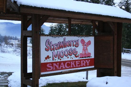 The Strawberry Moose Snackery: The sign at the front