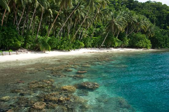 Gatokae Island, Solomon Islands: Beach at the lodge