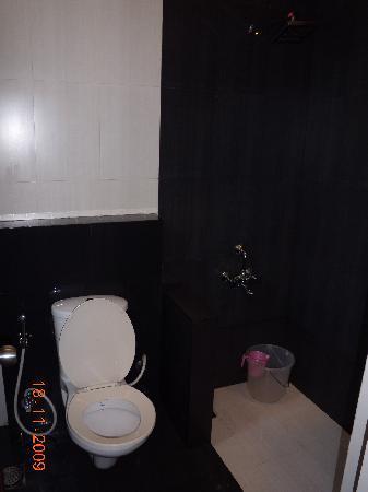 Vistana Hotel: Toilet