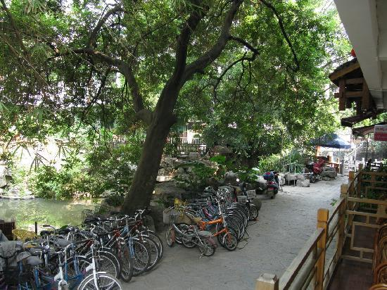 Rosewood Inn: The quiet alley and the canal