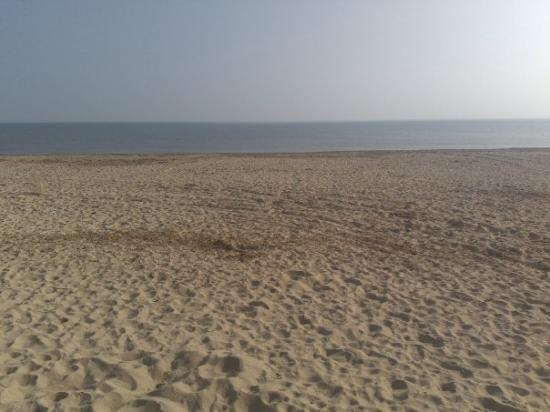 Great Yarmouth, UK: hemsby beach