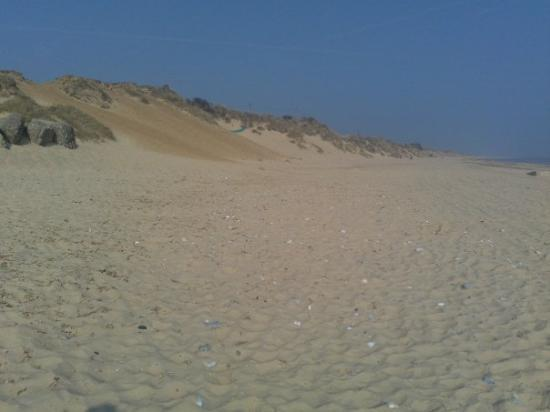 Great Yarmouth, UK: hemsby beach west
