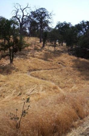 Tehachapi, CA: 2007: One of Stallion Springs' many equestrian/hiking trails.