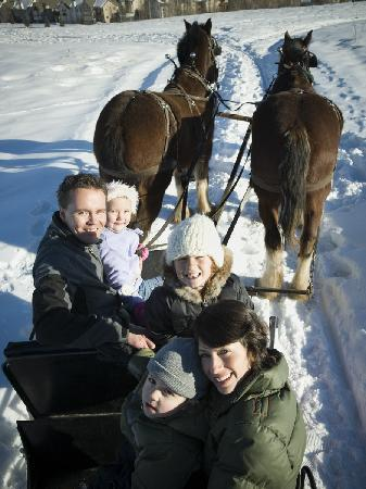 Homestead Resort: Enjoy a western tradition - Sleigh and horseback rides