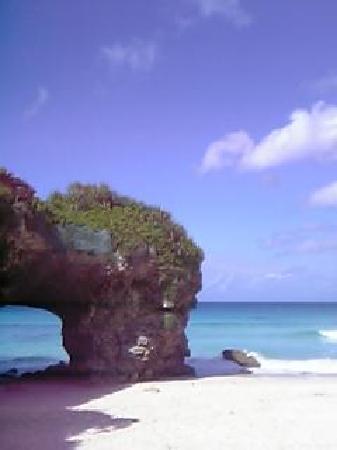 Sunayama Beach: 砂山です
