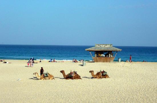 Riu Oliva Beach Resort Reviews