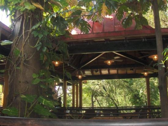 esta era la cabañita en donde desayunábamos. - picture of karibe ... - La Cabanita