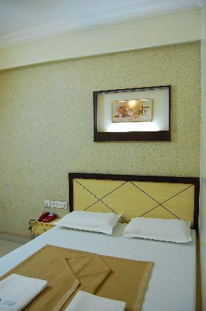 Sandhya Lodge : comfort room category non a/c