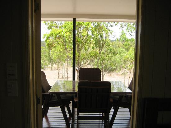 Barking Owl Retreat : Deck as viewed from the bedroom door. It is large, spacious, and excellent spot for dining.