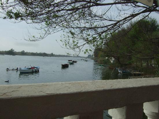 Casa Salvador: Barcas al lado del restaurante
