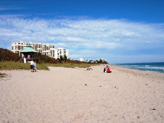 Boca Raton Plaza Hotel and Suites: Plage à proximité