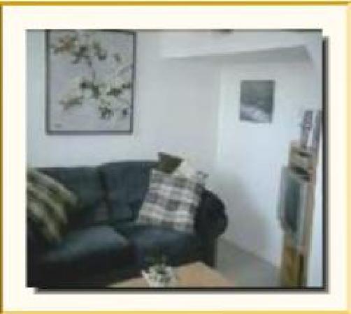 Elm Arbour Bed and Breakfast: Livin Room