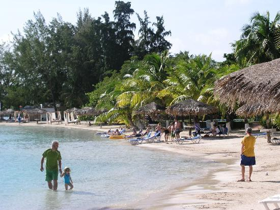 Fantasy Island Beach Resort: Part of the beauty of the island!