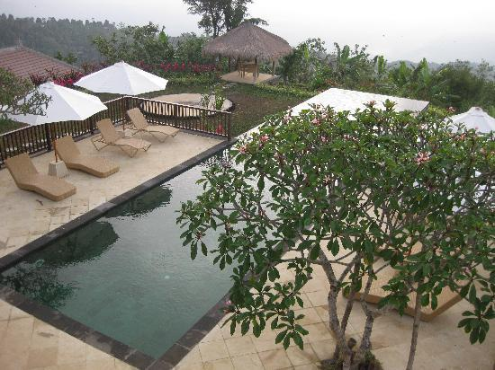 Munduk Moding Plantation: The pool from our terrace
