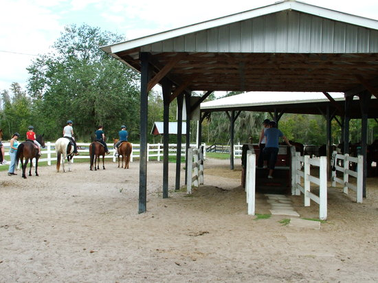 ‪Horse World Riding Stables - Private Rides‬