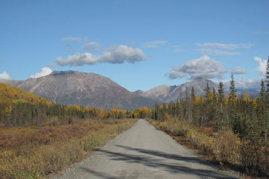 Currant Ridge: The beautiful road there