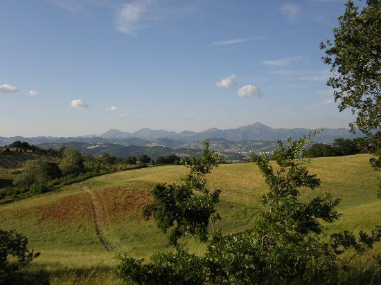Villa Pian Di Cascina : The view