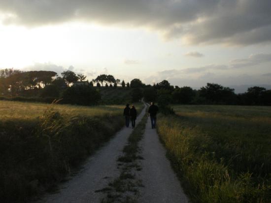 Villa Pian Di Cascina: The road to the nearest town