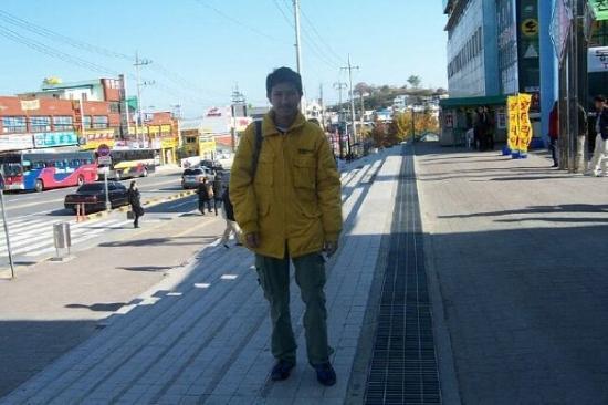 江陵市照片
