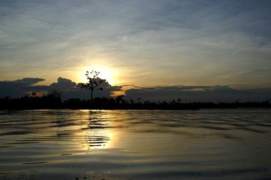 Pacaya Samiria National Reserve: Reserva Nacional Pacya - Samiria