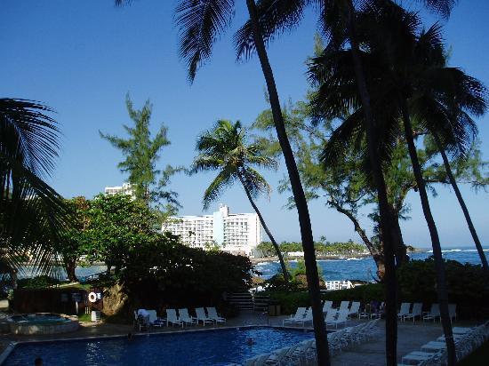 The Condado Plaza Hilton: Pool area