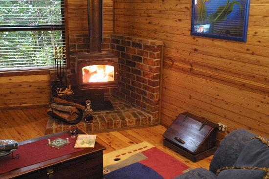 The Mouses House Rainforest Retreat: Private Fire place