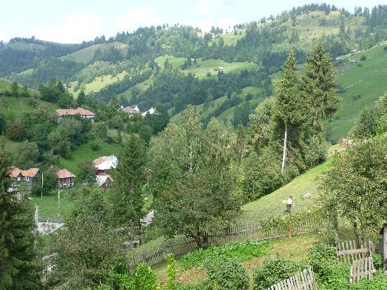 Moeciu de Sus, Romania: The view from one of our windows