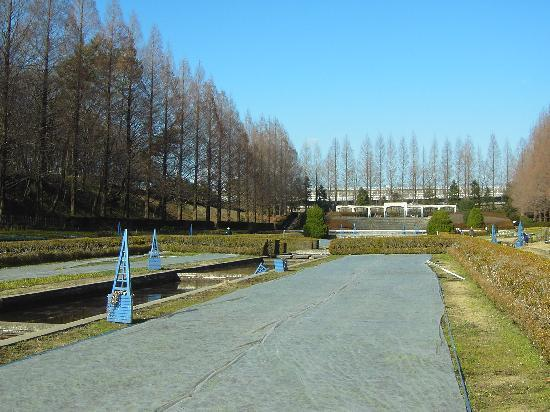 Sagamihara Prefectural Park: 県立相模原公園の写真その3