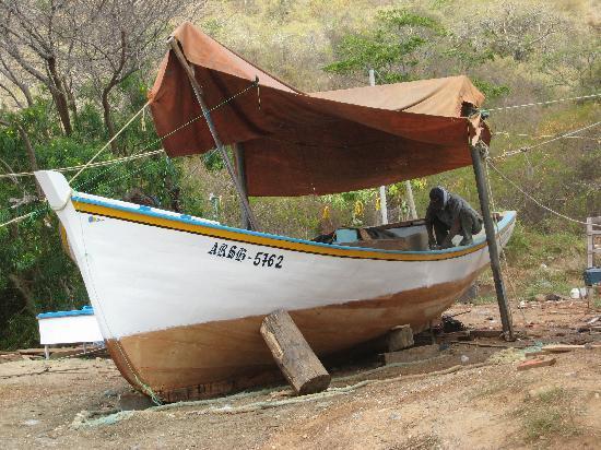 Posada Rancho Delfin: omgeving