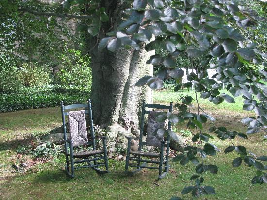 Beechwood Inn: The rocking chairs under the beech tree