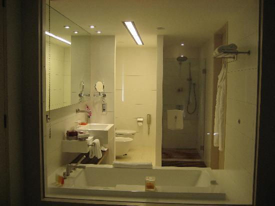 Kempinski Hotel Aqaba Red Sea: Separate bath and shower