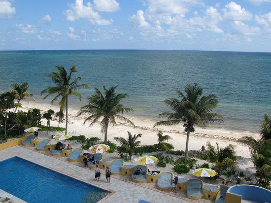 Maya Palms Resort & Dive Center: Sun and fun at the Maya Palms freshwater swimming pool and custom bling bling loungers.