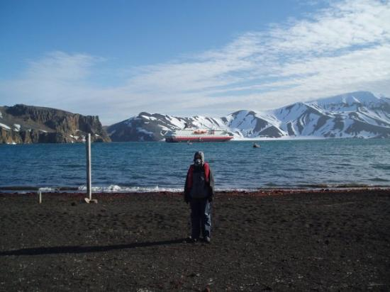 About to go for a swim... (Deception Island)