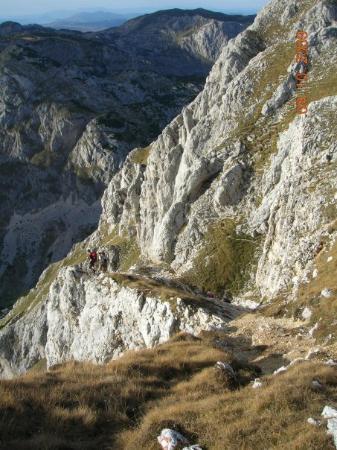 Жабляк, Черногория: Medjed-kruzna tura
