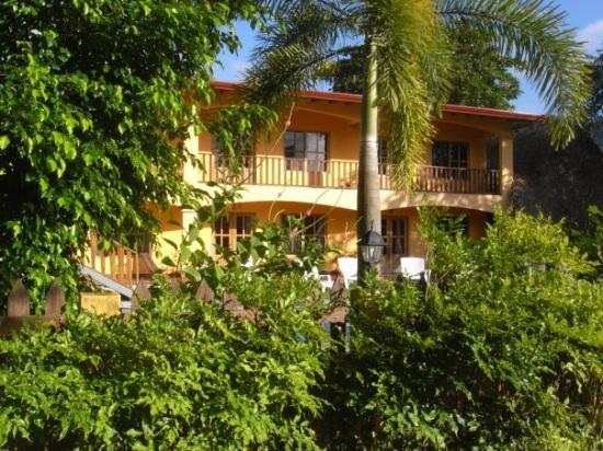 Hotel Green, Jaco