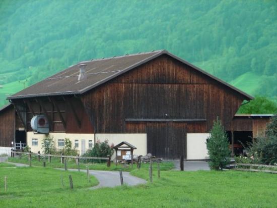 Flums, Zwitserland: Switzerland, Heidi Land Farm